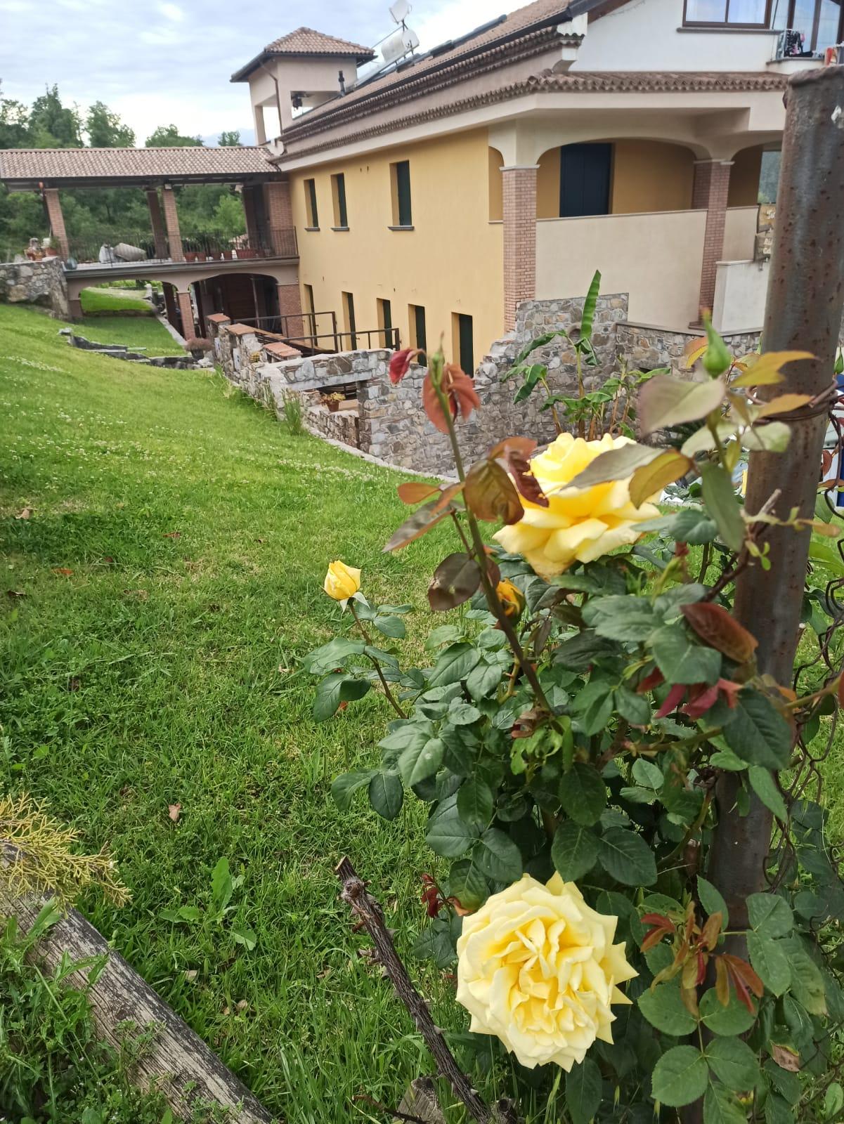 WhatsApp Image 2021-07-13 at 10.02.46 (1)tenuta_appartamenti.jpg